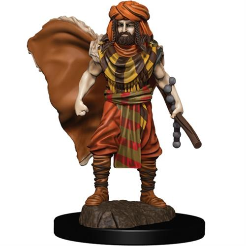 DnD figur Icons of the Realms Premium - Human Druid Male