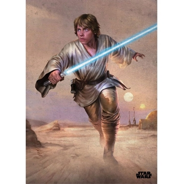 Star Wars -  Episode 4 Luke - 32 x 45 cm Metal Skilt